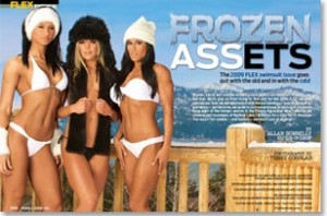 frozen-assets-flex-300x203-300x198